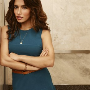 FAIRLY LEGAL -- Season:2 -- Pictured: Sarah Shahi as Kate Reed