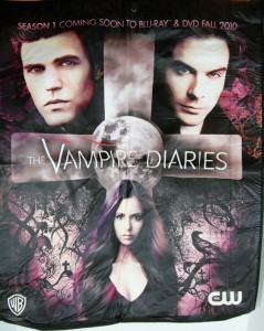 Enter to win the Vampire Diaries 2011 Comic Con bag from NiceGirlsTV.com