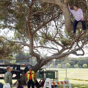 "MODERN FAMILY - ""When a Tree Falls"""