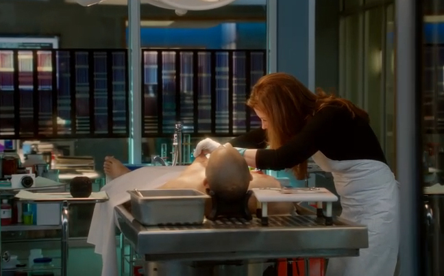 Body of Proof Dana Delany