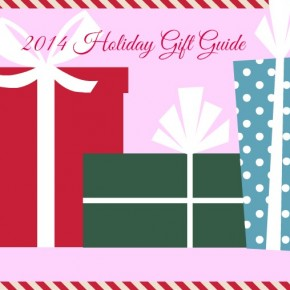 2014-holiday-gift-guide-ngtv