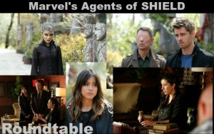 MARVEL'S AGENTS OF SHIELD Roundtable Discussion