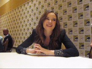 The Flash: Danielle Panabaker on S1 and what's to come