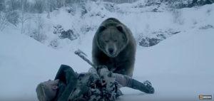 vik_bear2